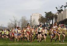 Campeonatos Nacionais de corta-mato - distância curta