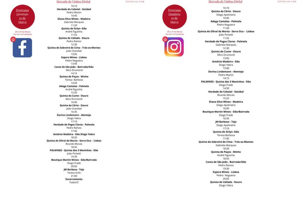 Mercado de Vinhos Digital, com conversas à volta de um copo de vinho