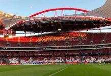 Tondela estádio Liga portuguesa