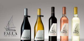 Vinho com história Falua