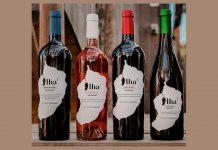 vinhos Ilha DOP Madeirenses